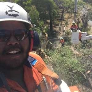 Mossy093 Photo